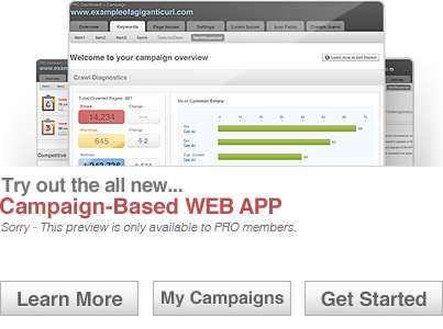 campaign based web app by SEOmoz.org